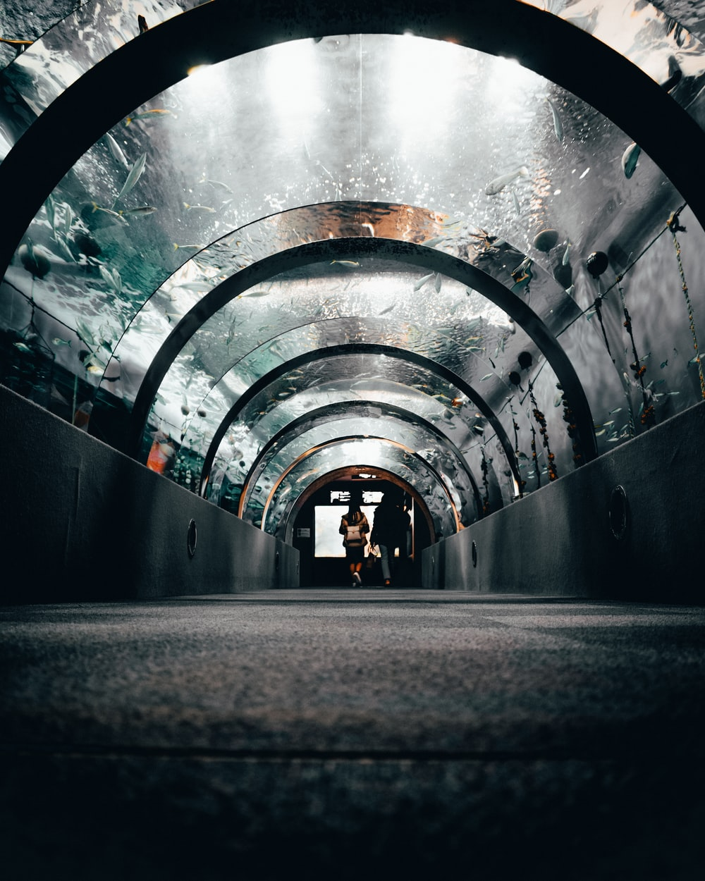 man in black jacket standing on tunnel