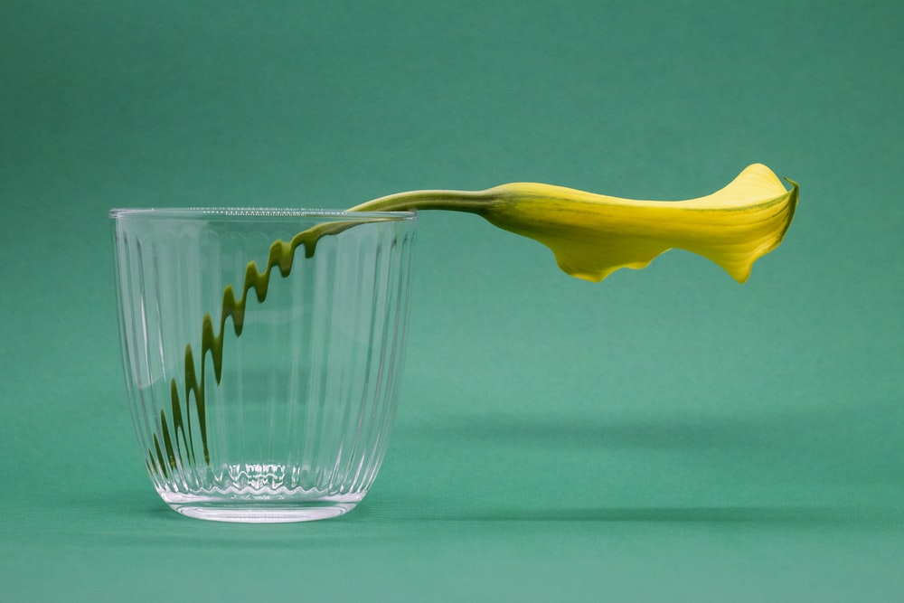clear glass cup with yellow handle