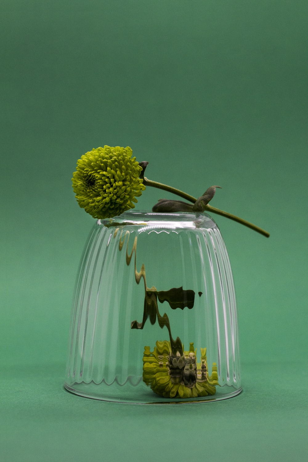 green and yellow flower bouquet in clear glass vase
