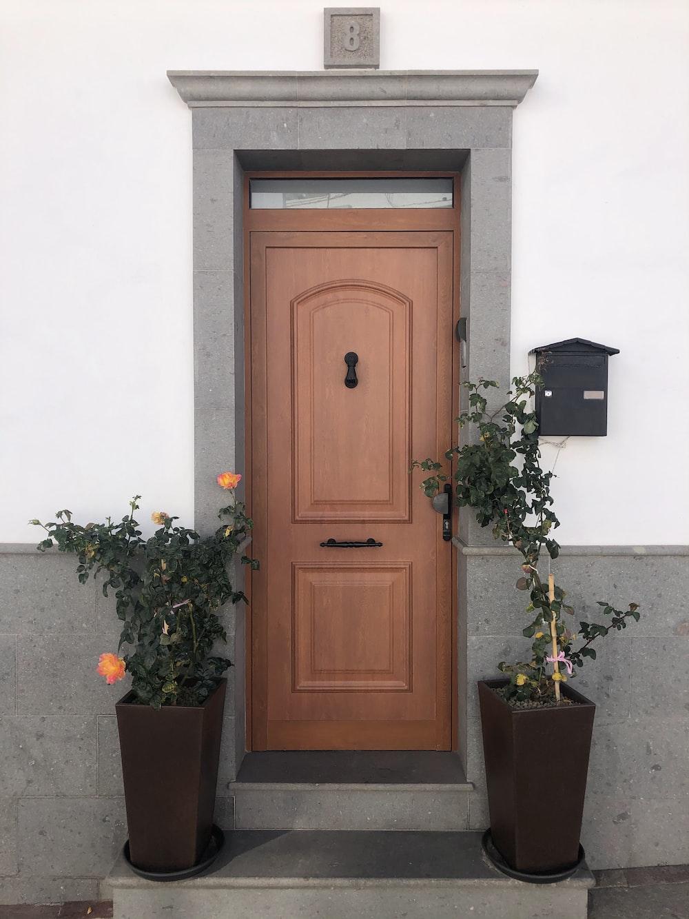 brown wooden door beside green potted plant