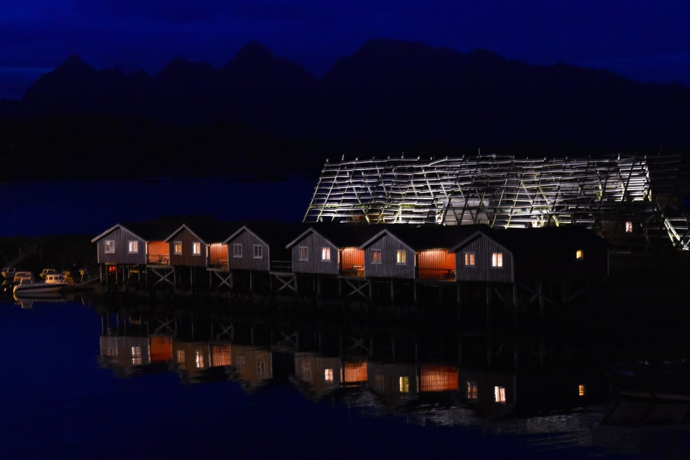 brown and black house near body of water during night time