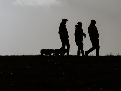 silhouette of people standing on grass field during daytime
