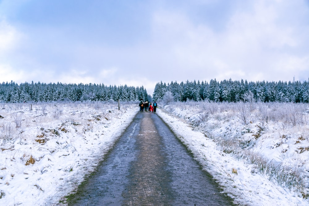 2 people walking on snow covered road during daytime
