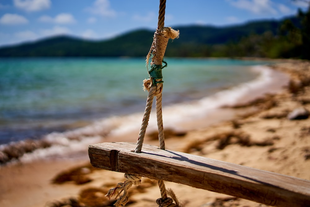 brown wooden swing on brown wooden log near body of water during daytime