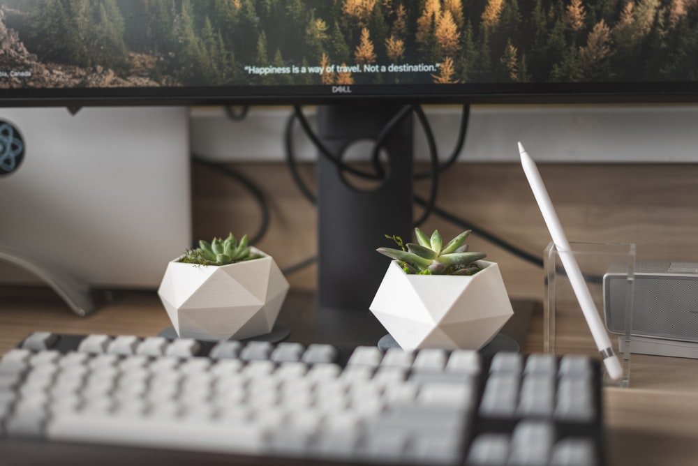 white computer keyboard near green plant