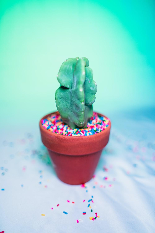 green ceramic figurine on pink pot