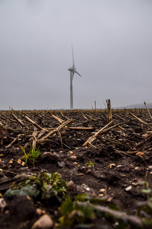 white windmill on brown grass field