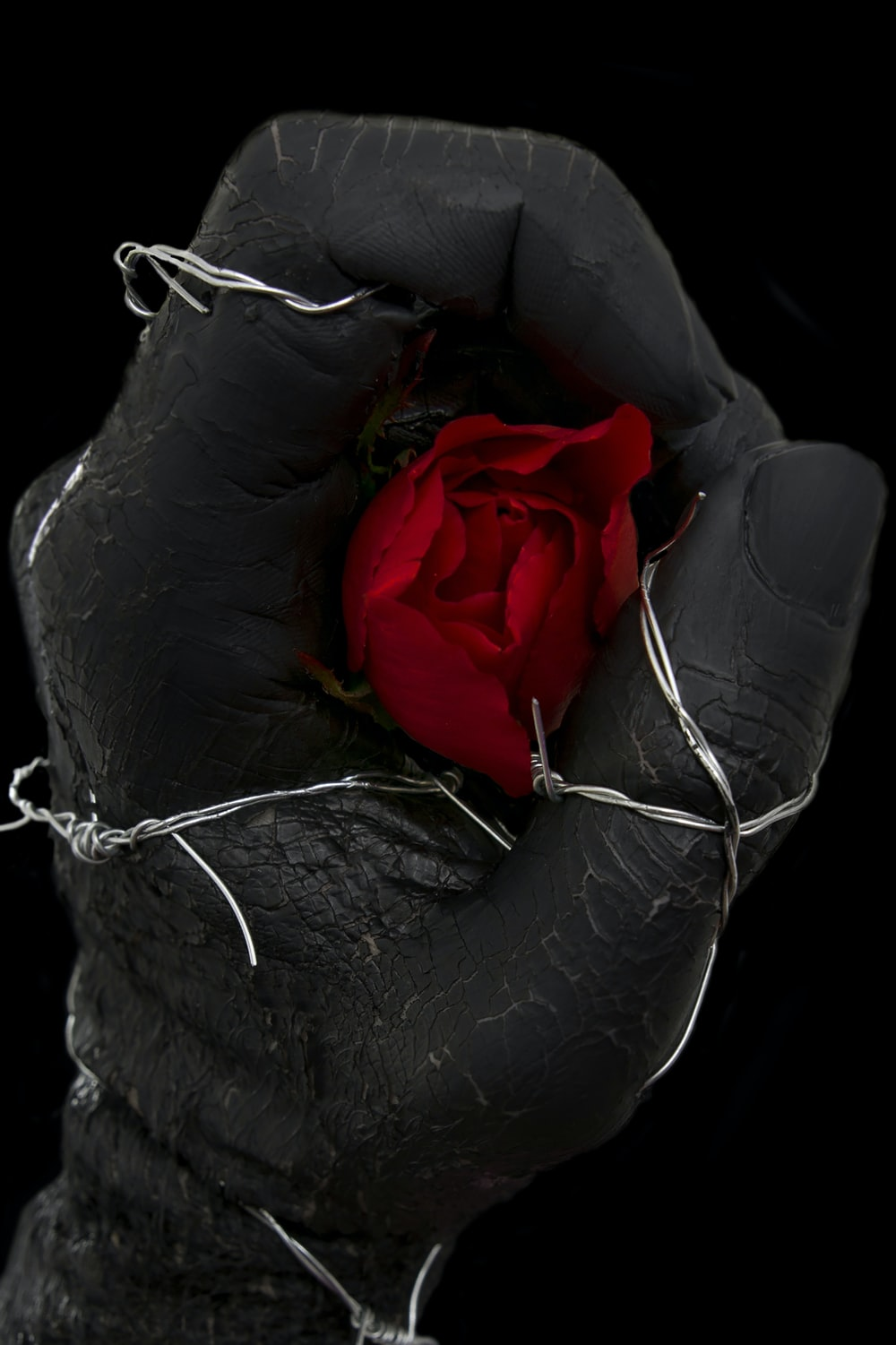 red rose on black leather sofa