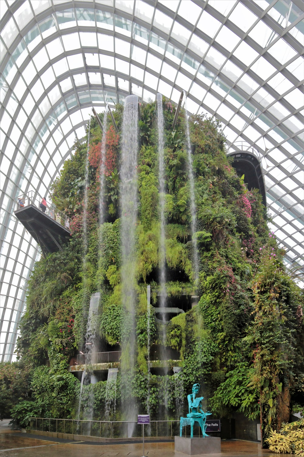 green trees inside a building