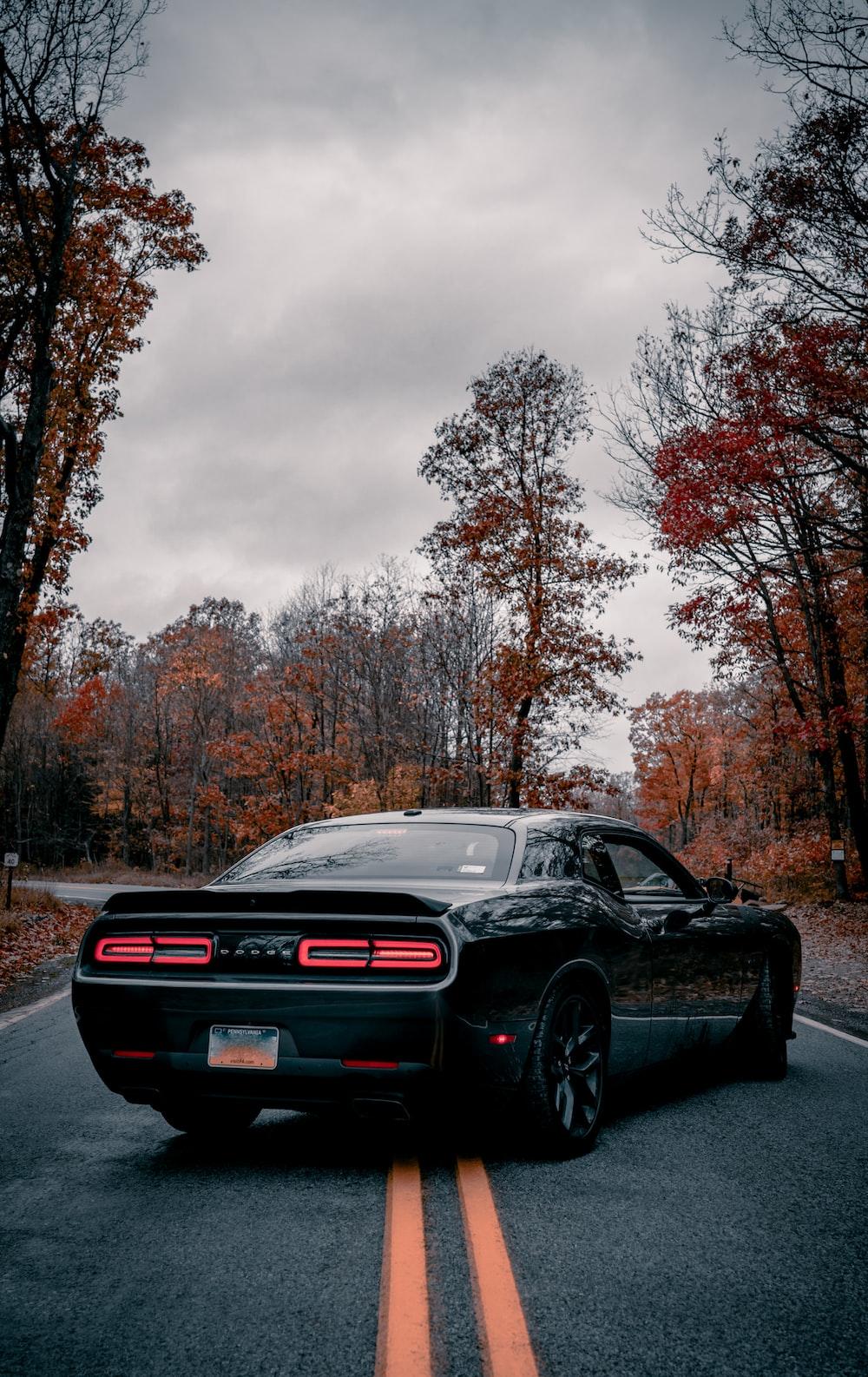 black bmw m 3 on road during daytime