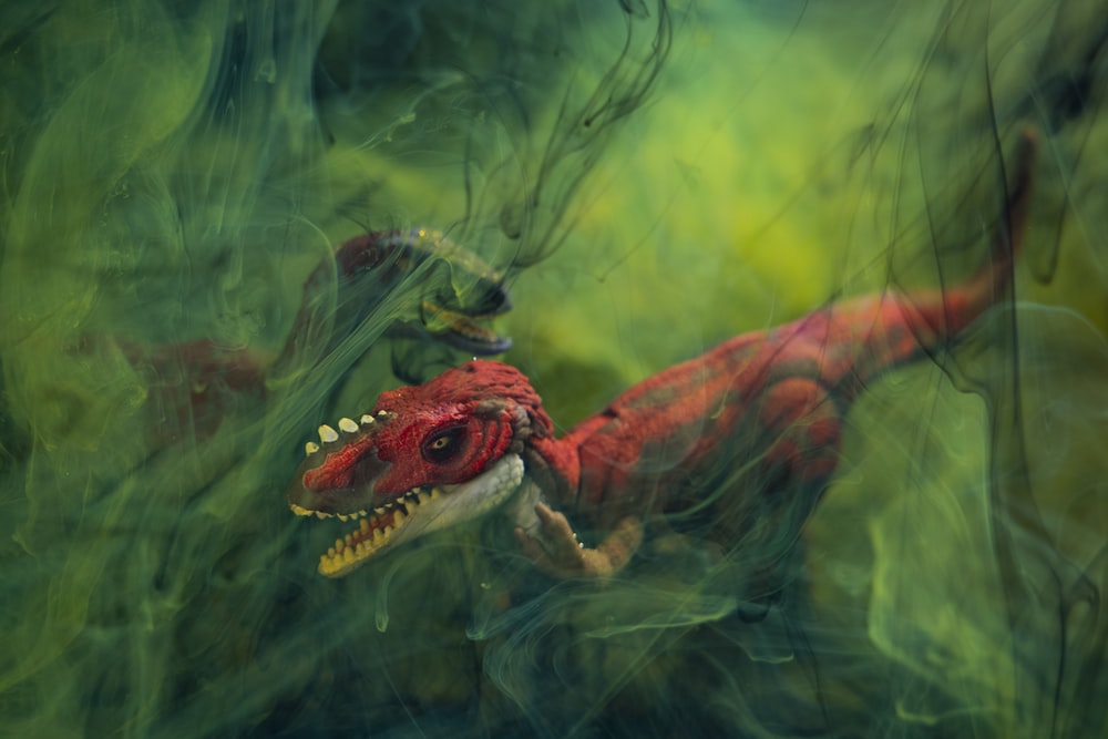 brown and green dragon in water