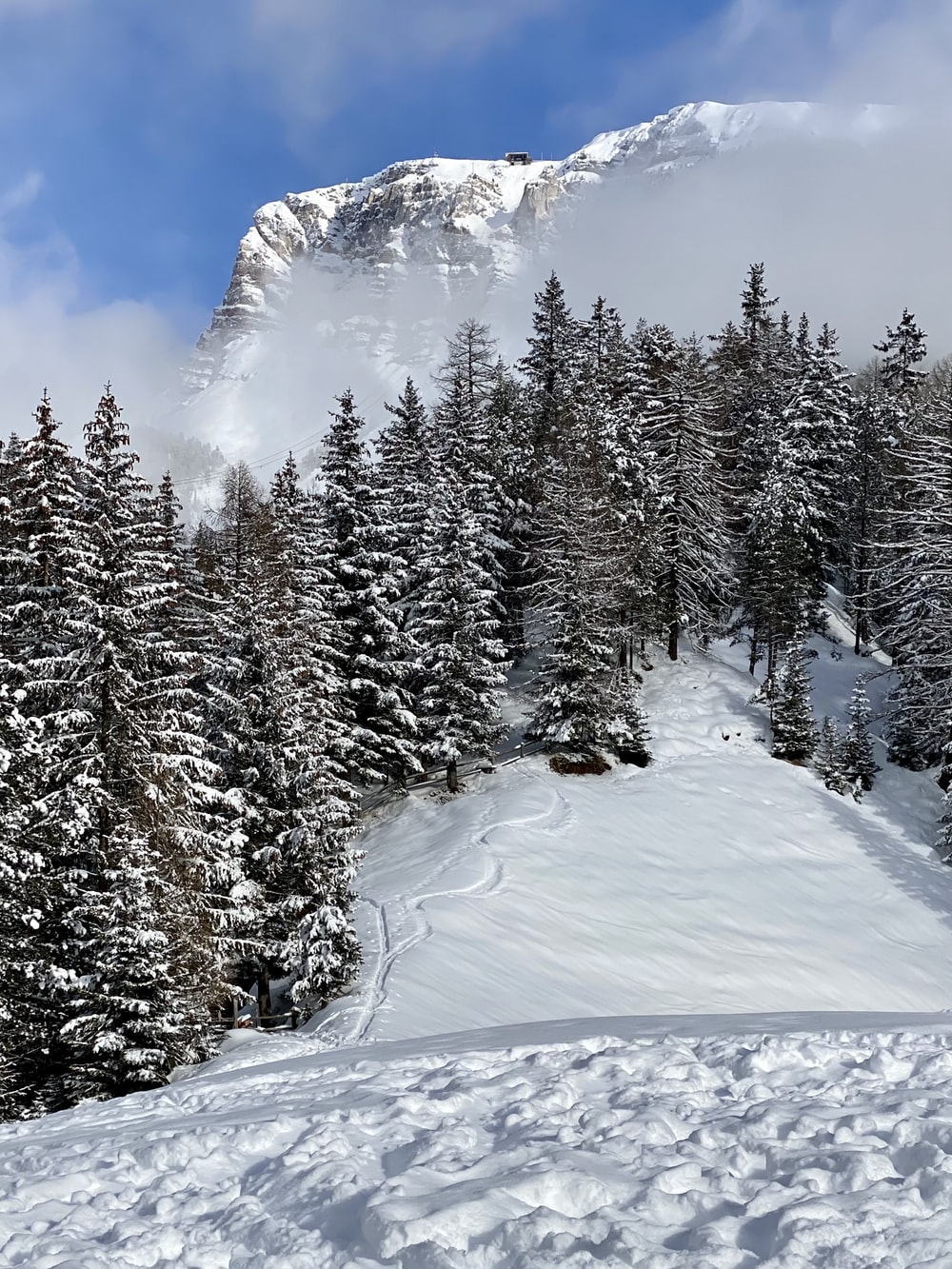 green pine trees on snow covered ground under blue sky and white clouds during daytime