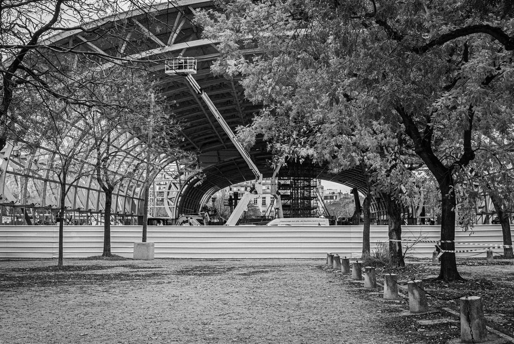 grayscale photo of trees and building