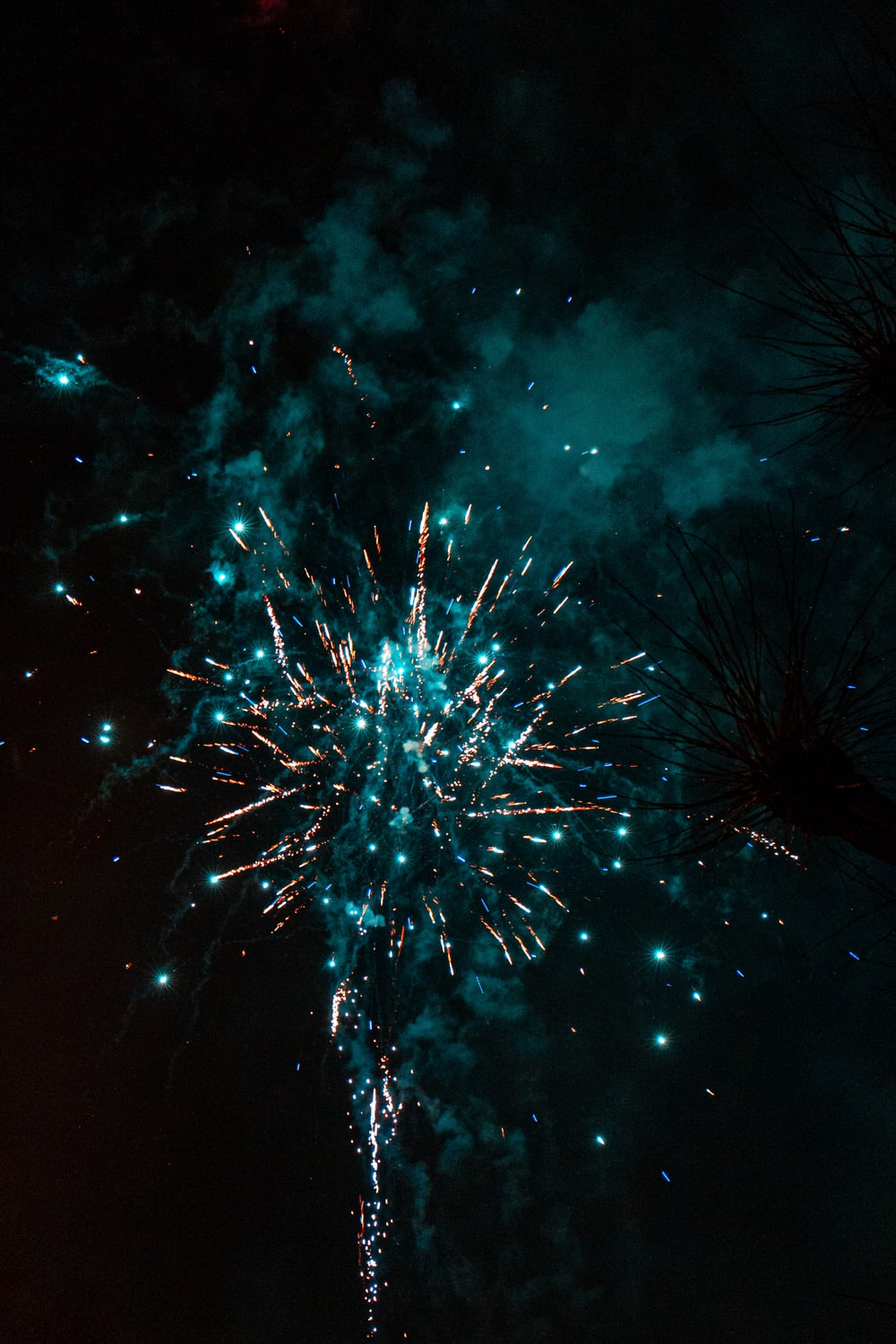 purple and white fireworks display