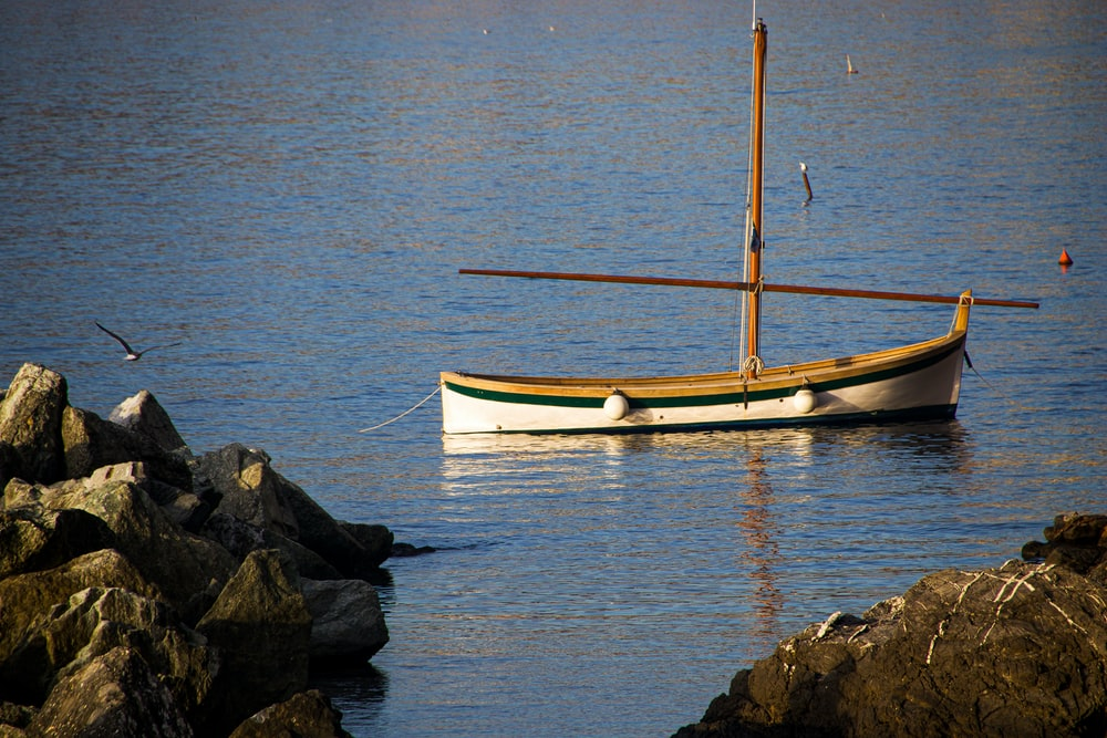 white and brown boat on body of water during daytime