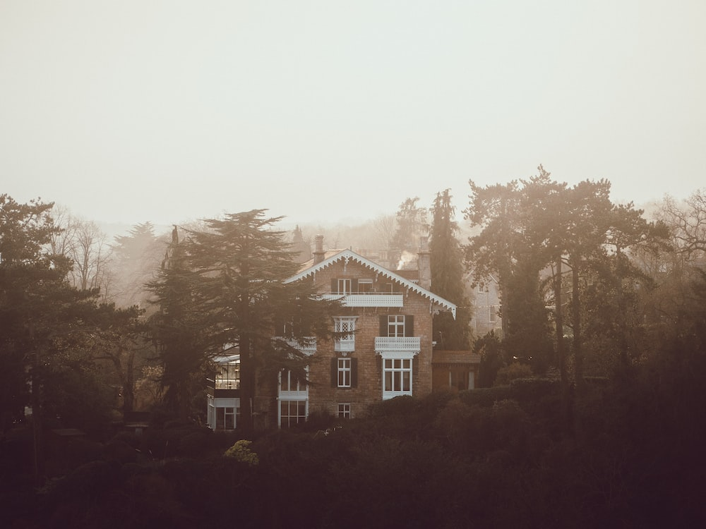 white and brown house surrounded by trees