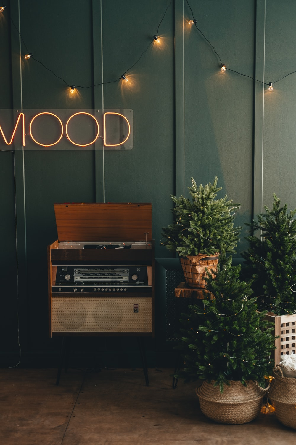 brown wooden shelf with green plant