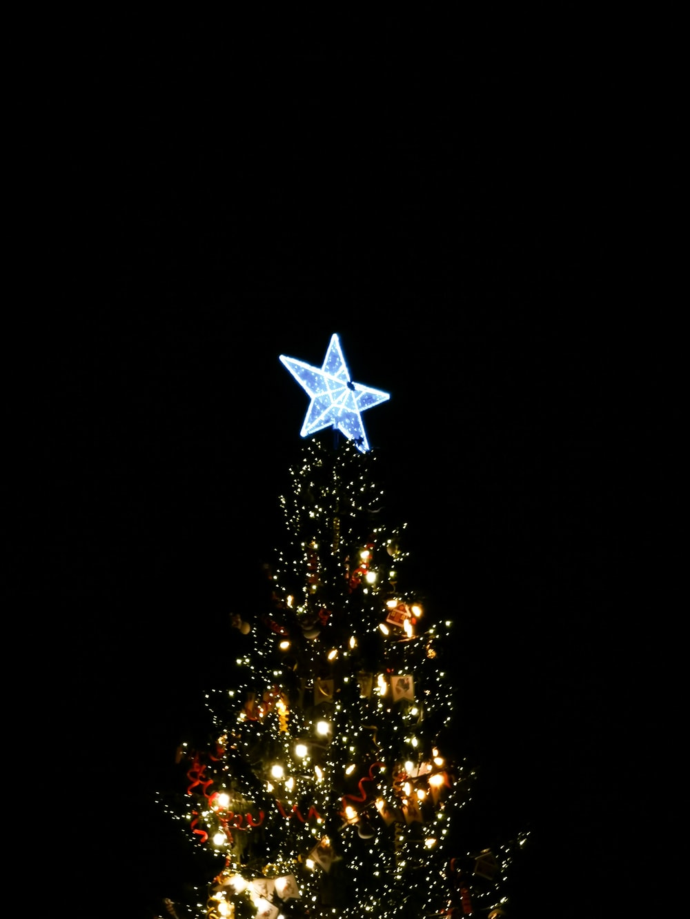 green christmas tree with white star ornament