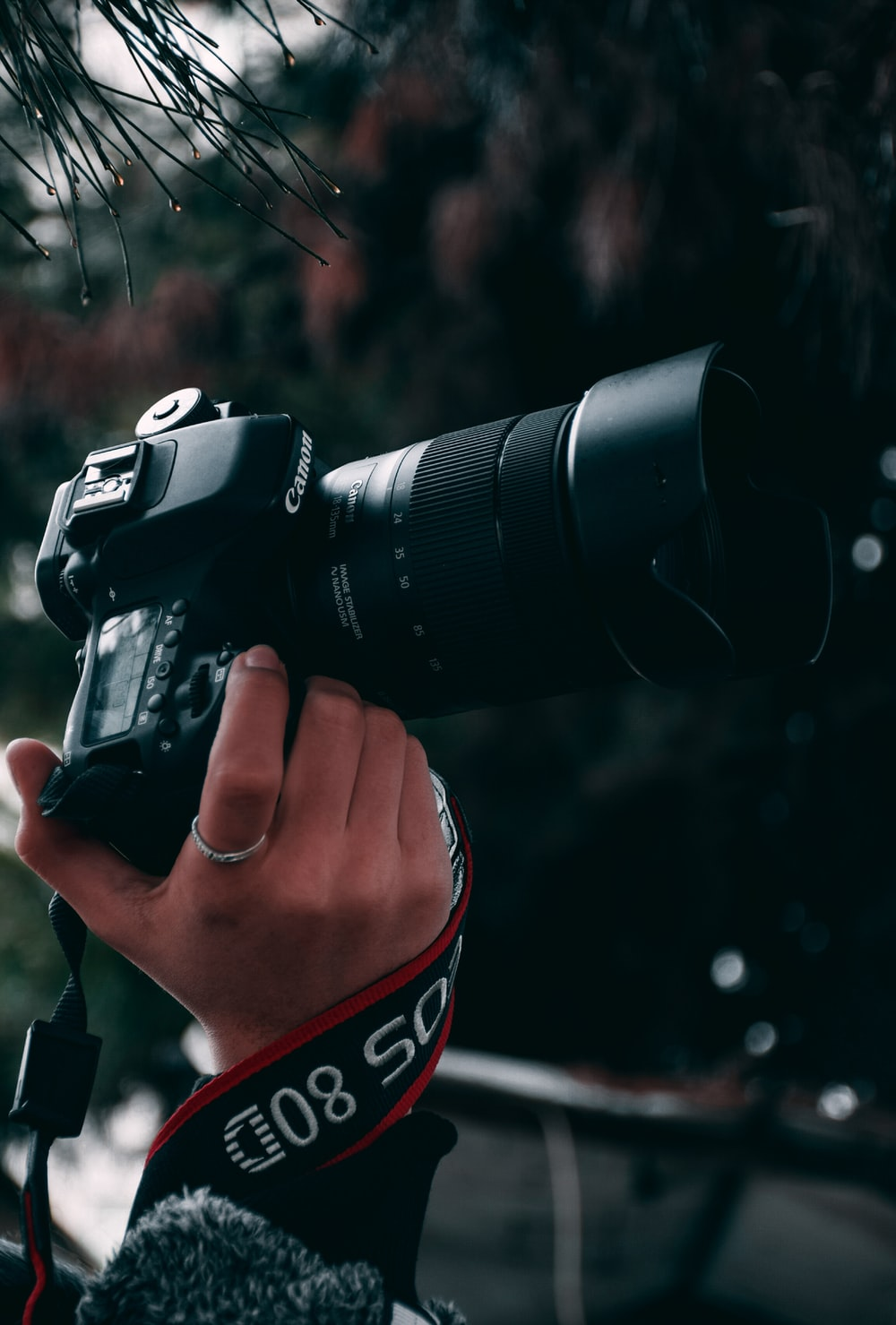 1000 Camera Wallpaper Pictures Download Free Images On Unsplash