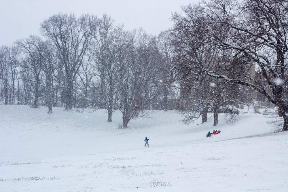 people on snow covered field during daytime