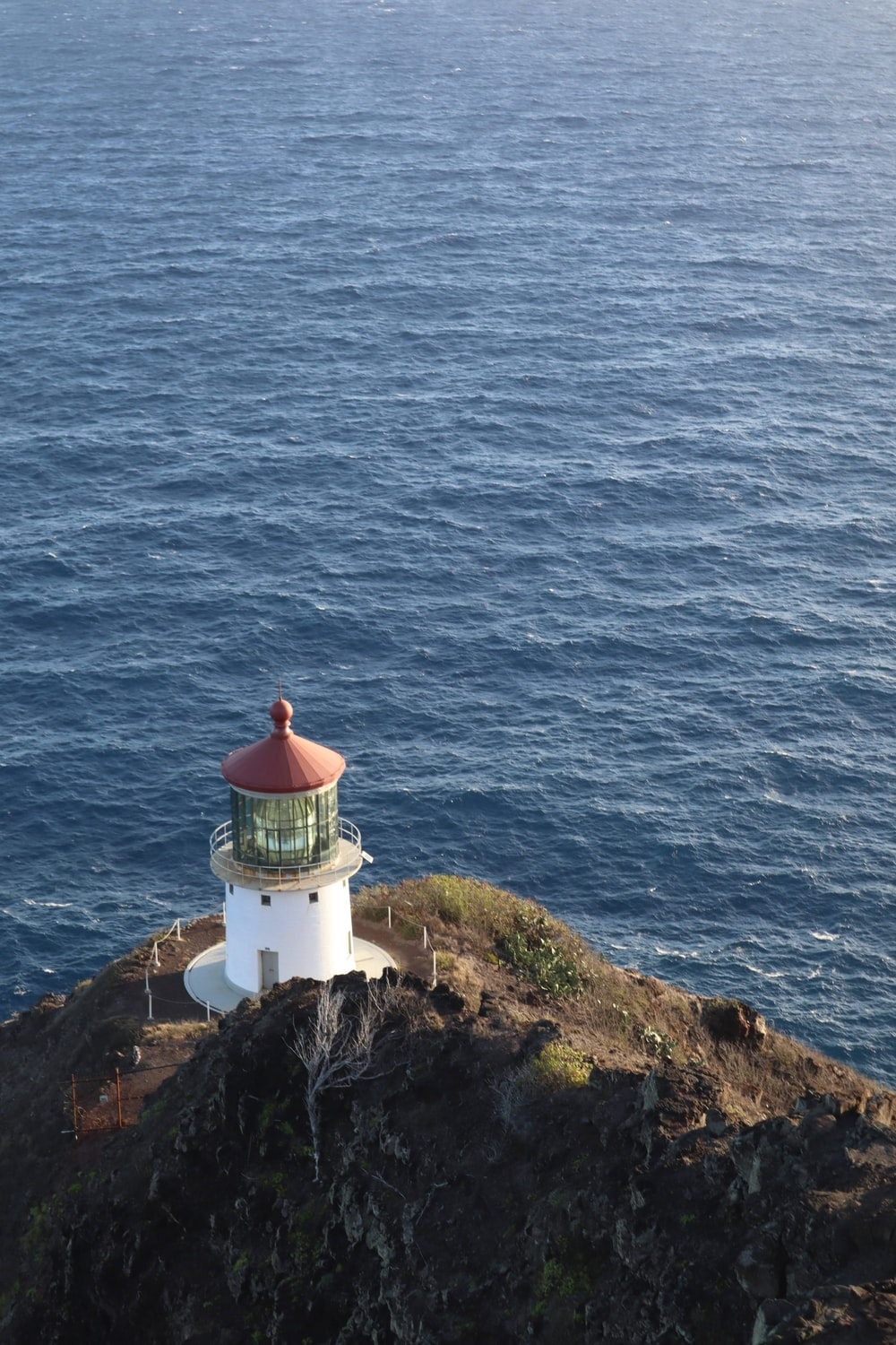 white and brown lighthouse on cliff beside sea during daytime