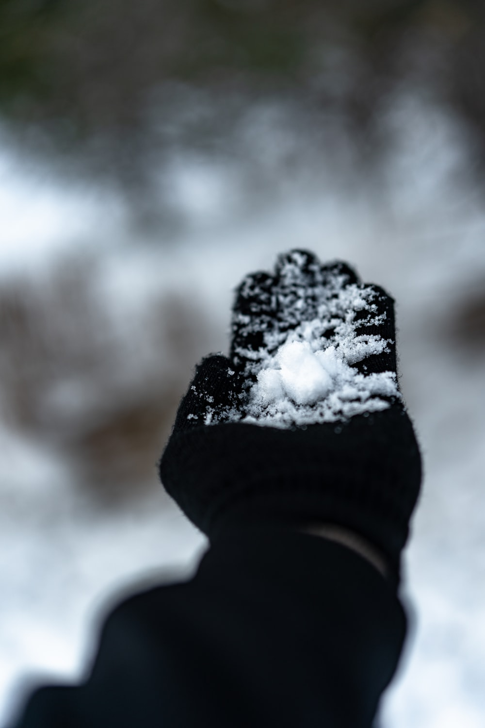 person in black winter gloves with snow on his hand