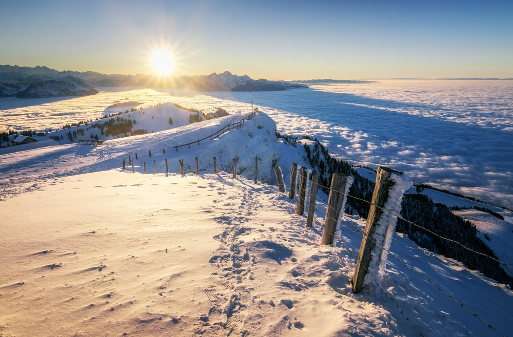 brown wooden fence on white snow covered ground during daytime