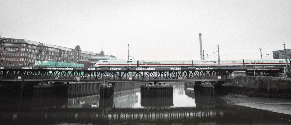 gray and white bridge over river