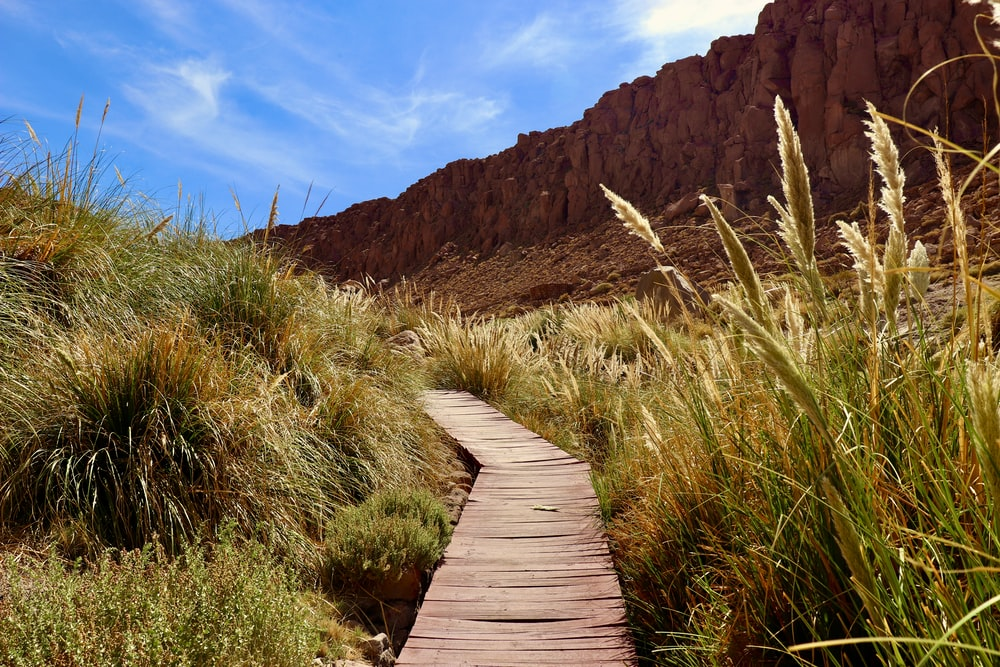 brown wooden pathway between green grass and brown mountain during daytime