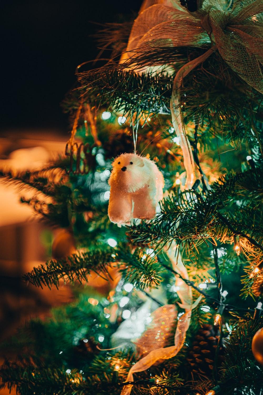 white fur animal on green tree