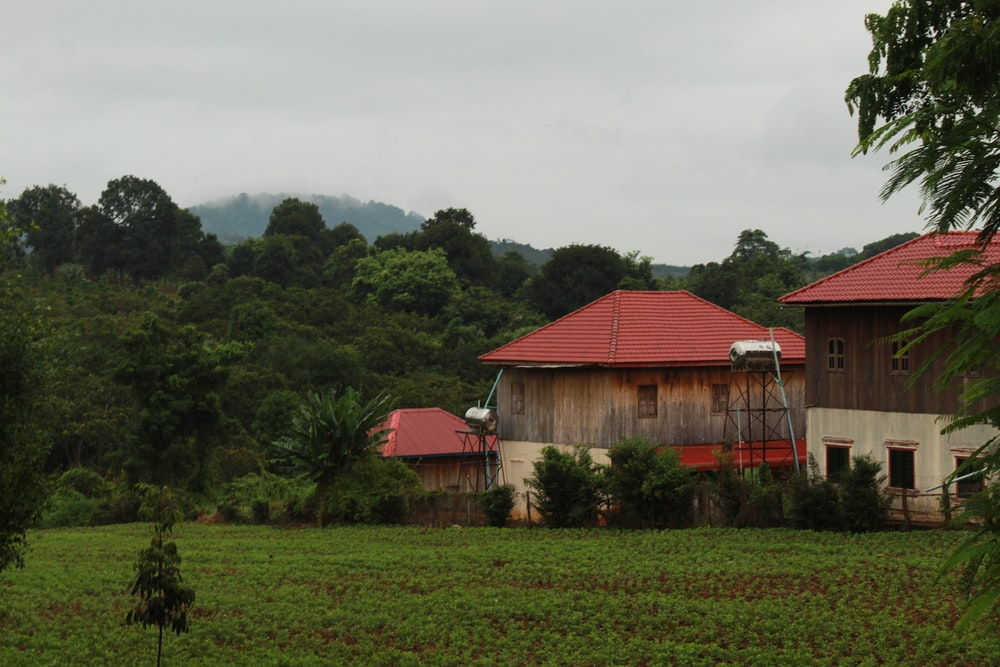 red wooden house near green trees during daytime