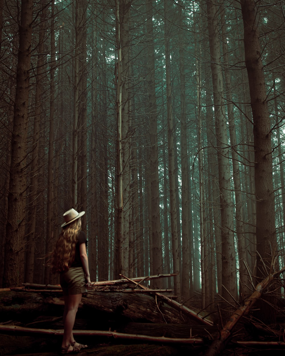 woman in brown hat standing on brown tree trunk during daytime