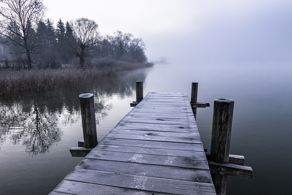 brown wooden dock on lake