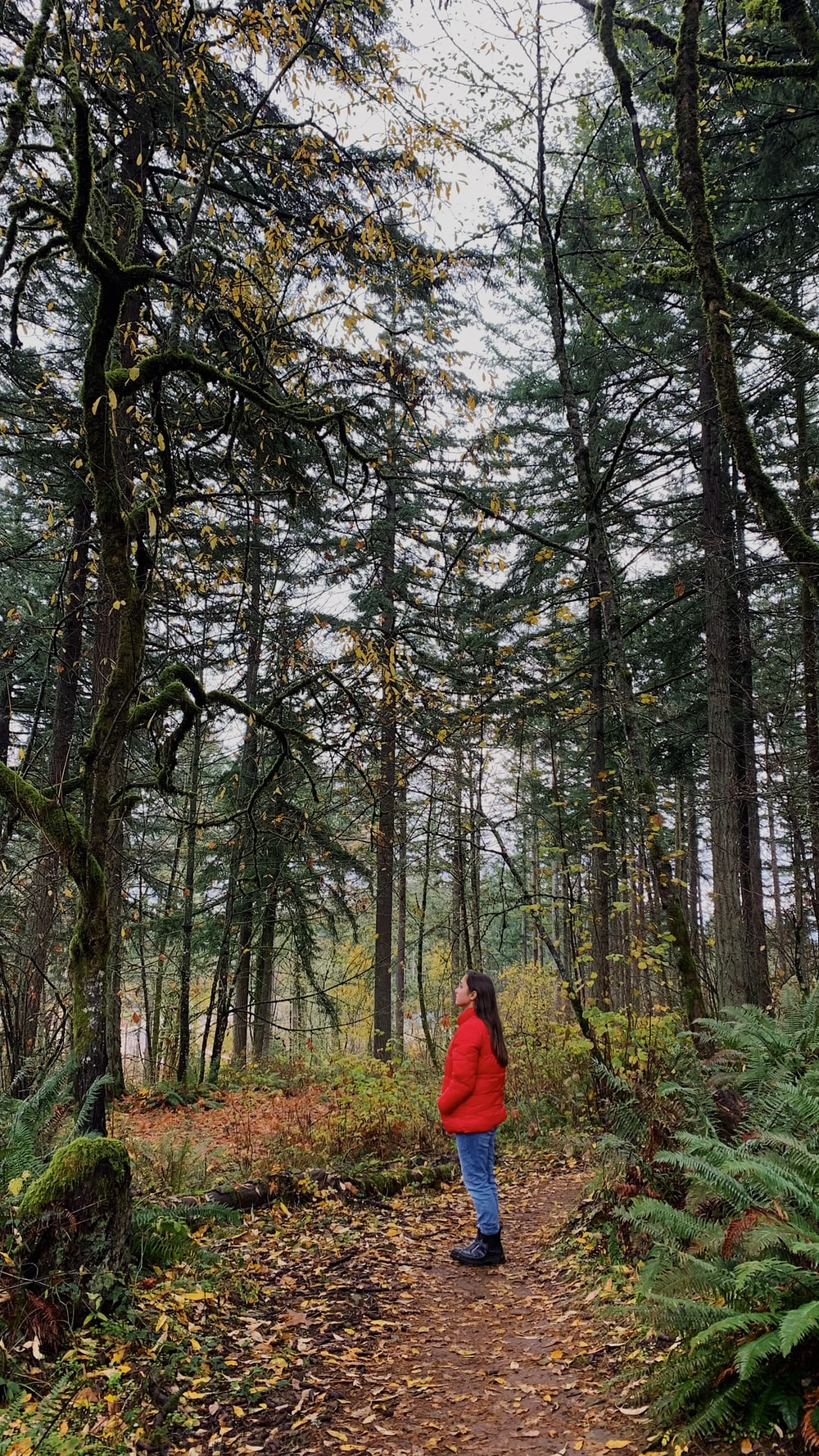 person in red jacket standing in the woods during daytime