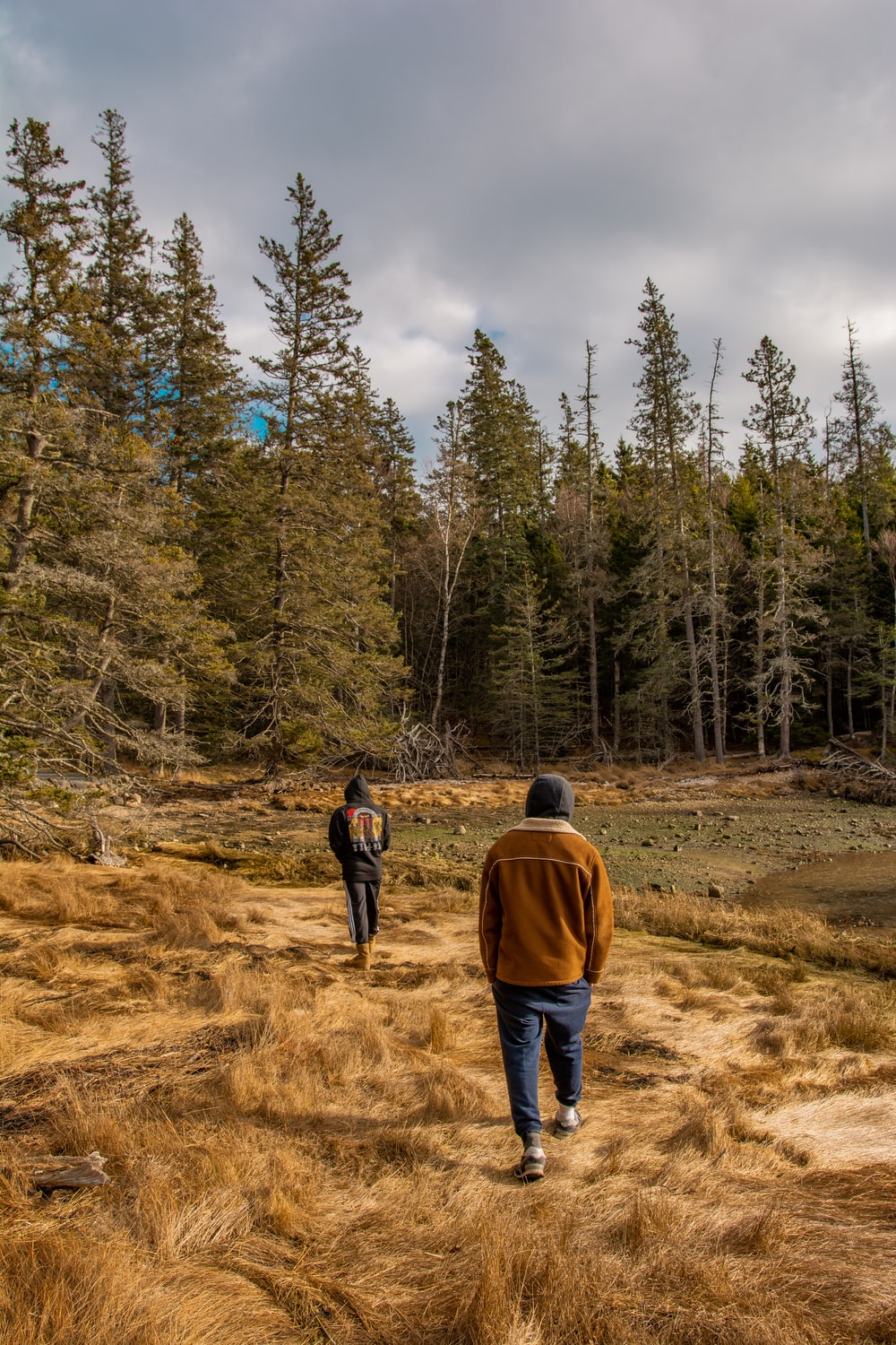 2 person walking on dirt road surrounded by trees during daytime