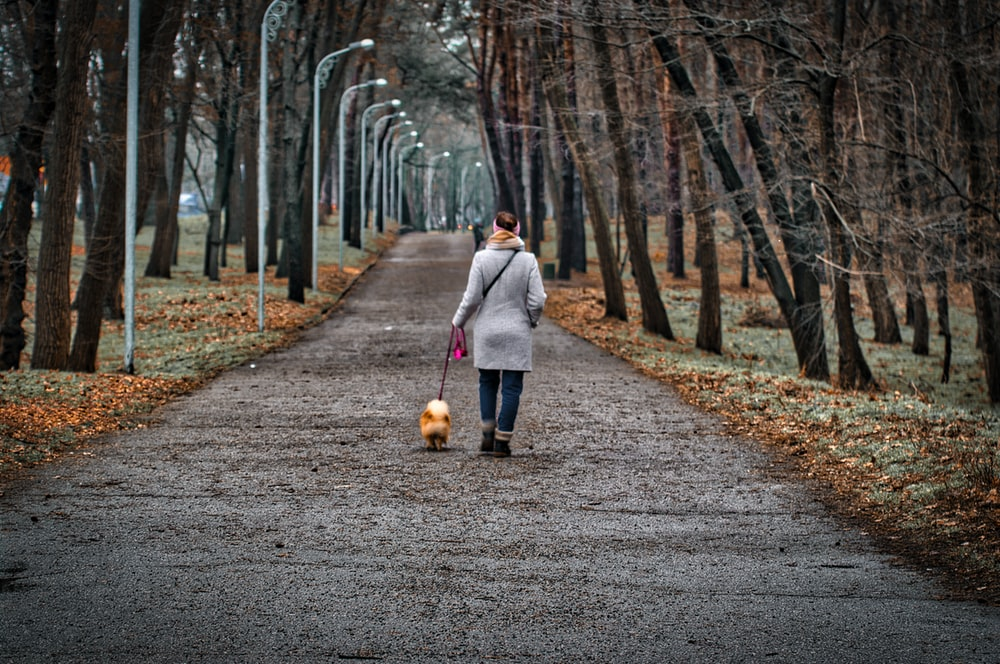 woman in gray coat walking on pathway with dog during daytime