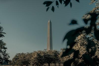 washington monument washington dc during daytime constitution zoom background