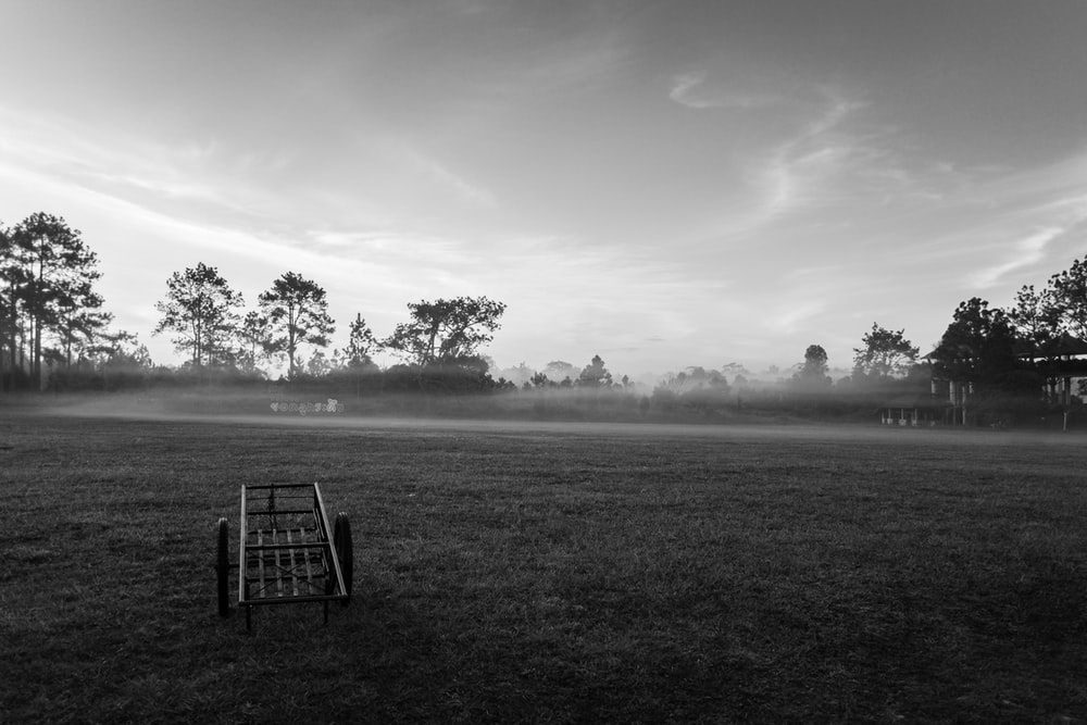grayscale photo of a wooden chair on a grass field