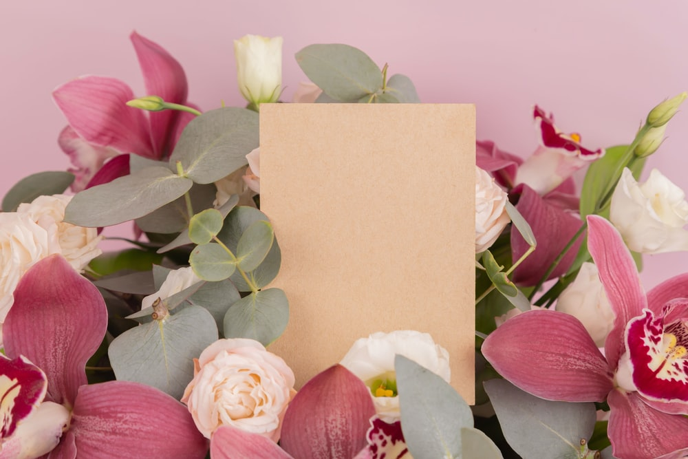 pink and white roses beside pink and white card