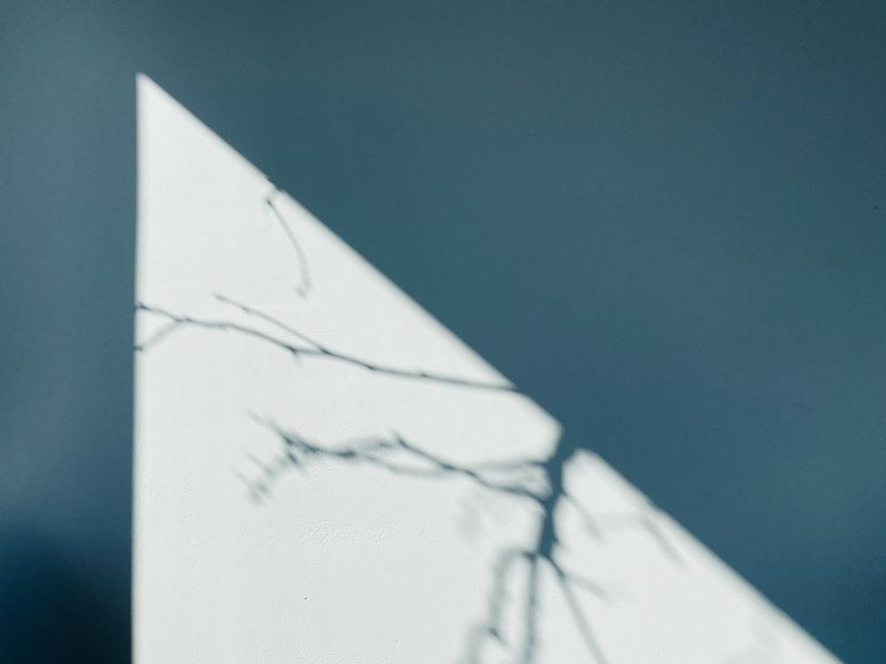 white printer paper on blue textile
