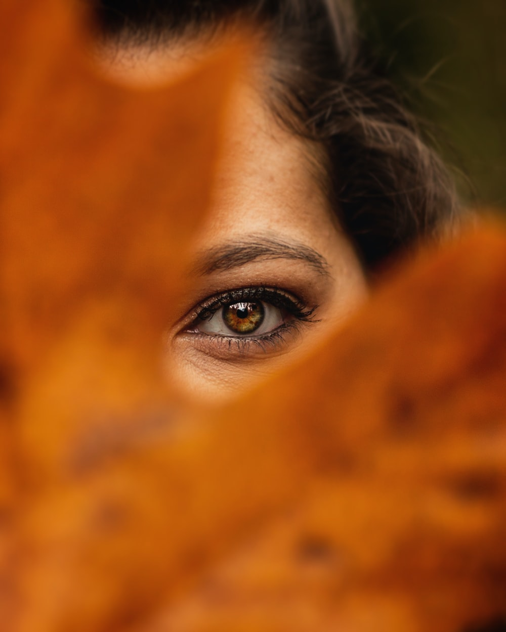 womans eye with brown eyes