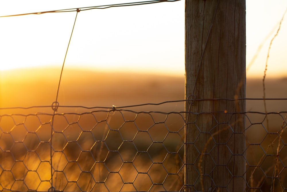 gray metal chain link fence during sunset