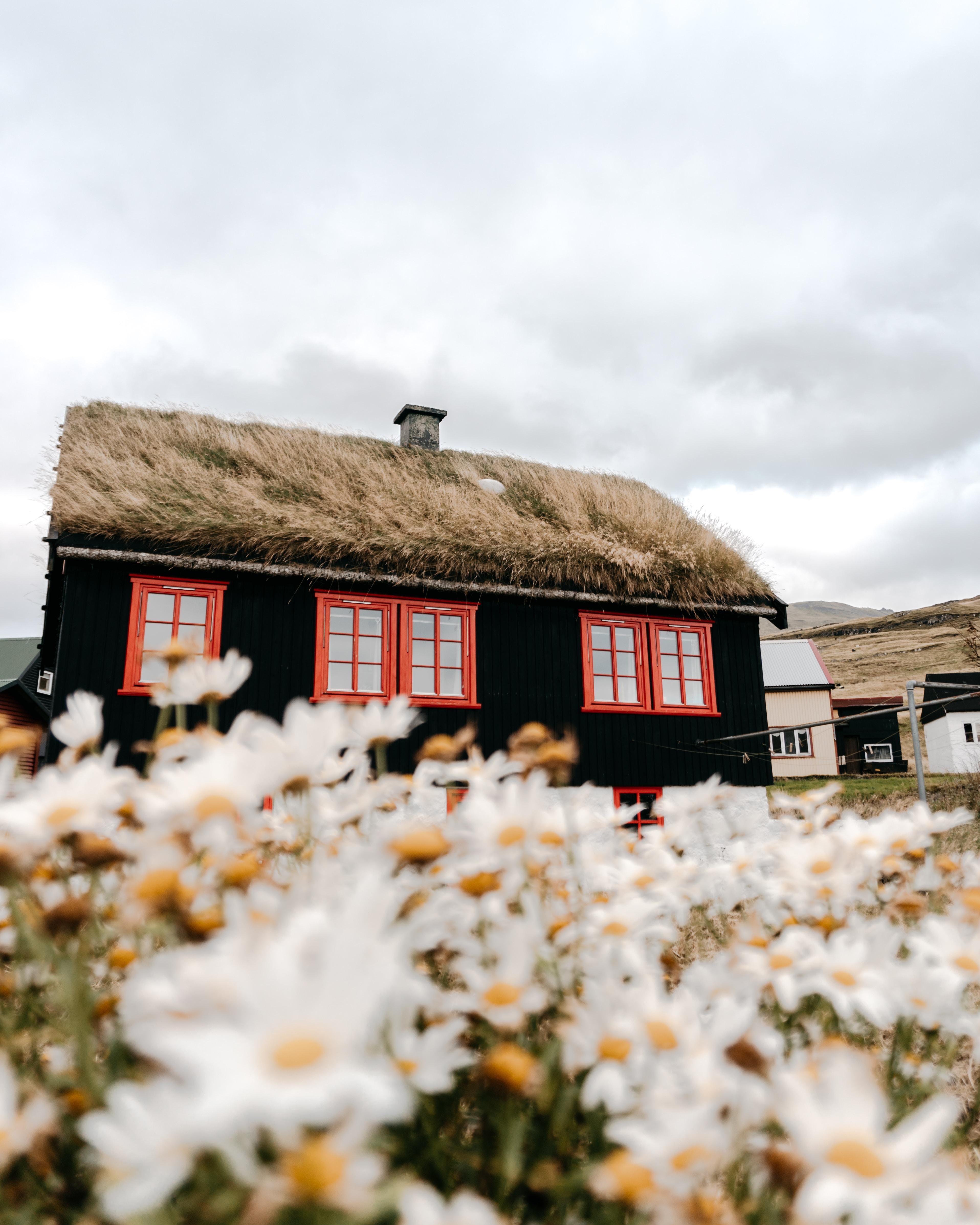 Народные школы в Скандинавии