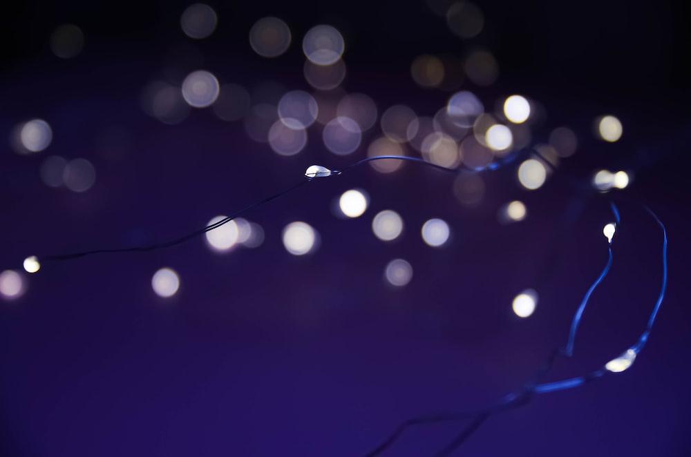 blue and white light bokeh