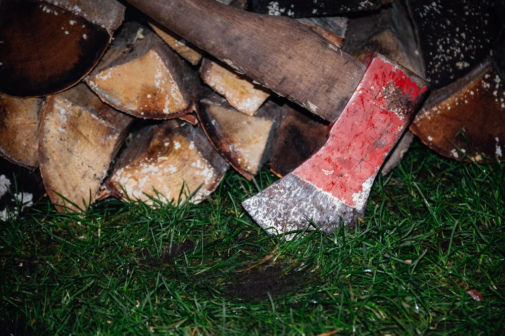 brown and red fire wood
