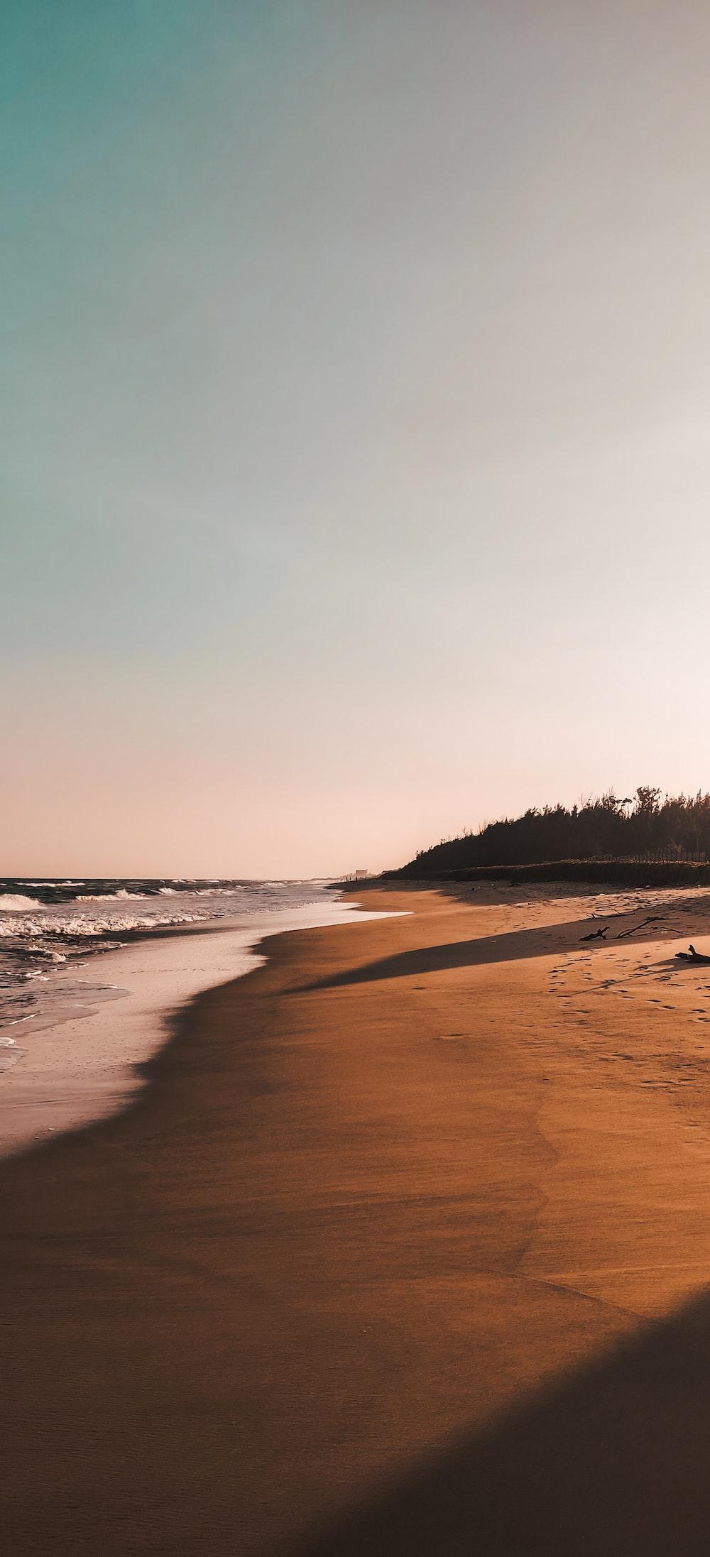 beach shore under gray sky