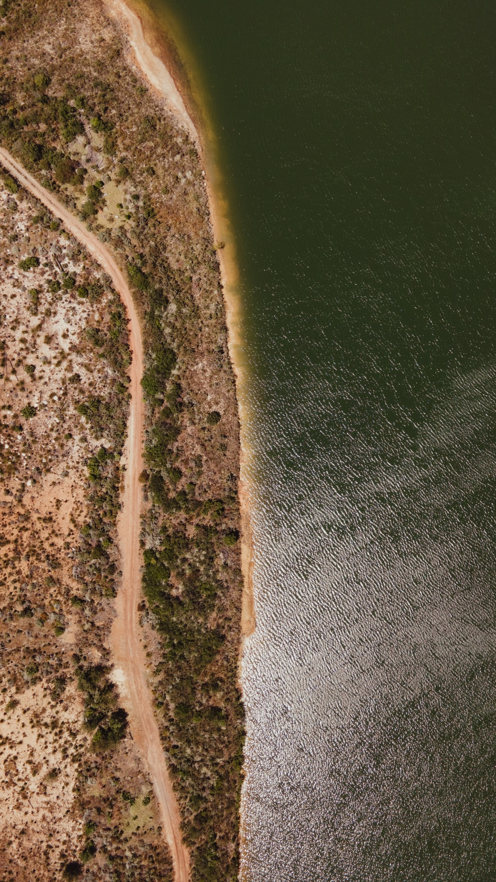 aerial view of green and brown land near body of water during daytime