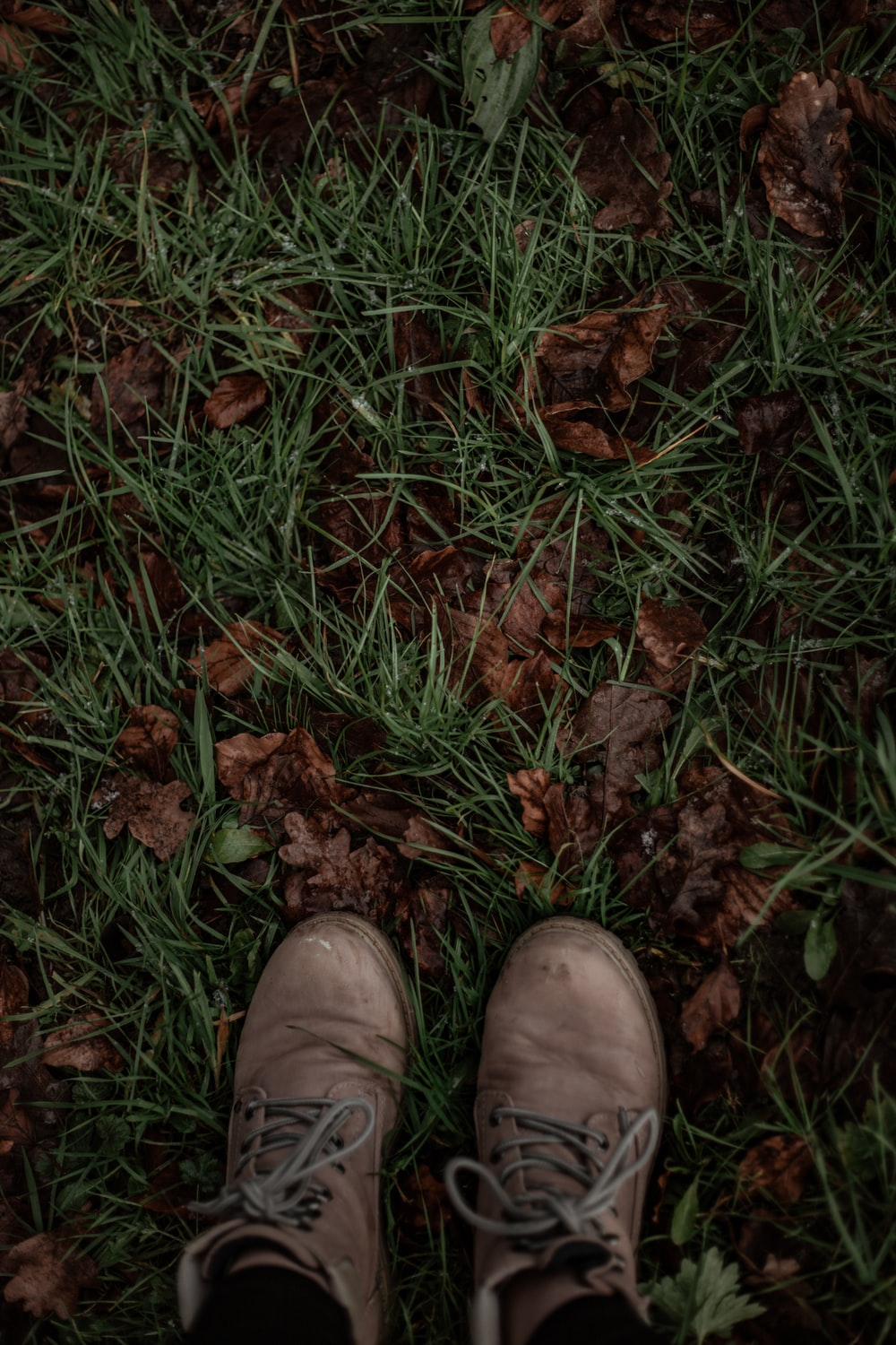 person wearing brown leather shoes standing on brown dried leaves