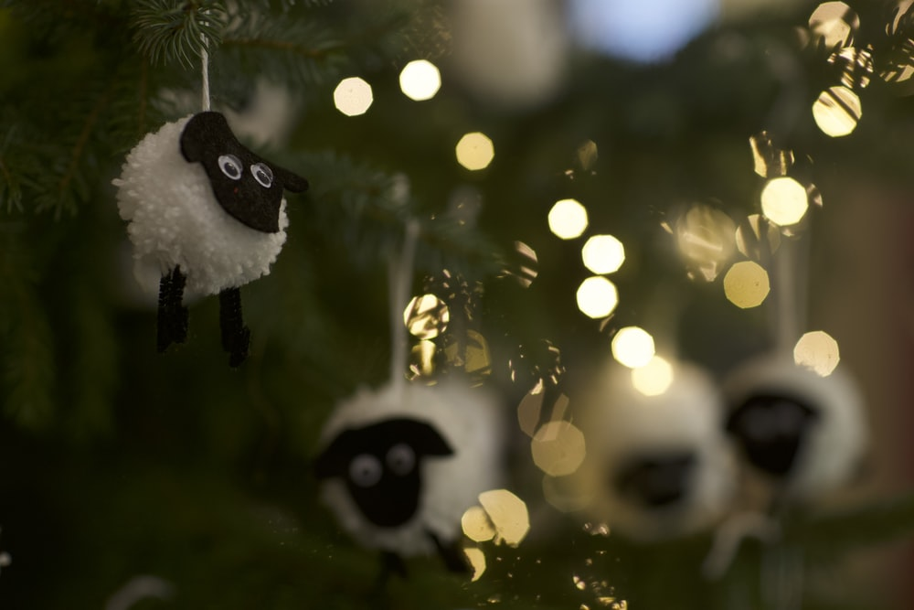 black and white panda on tree branch