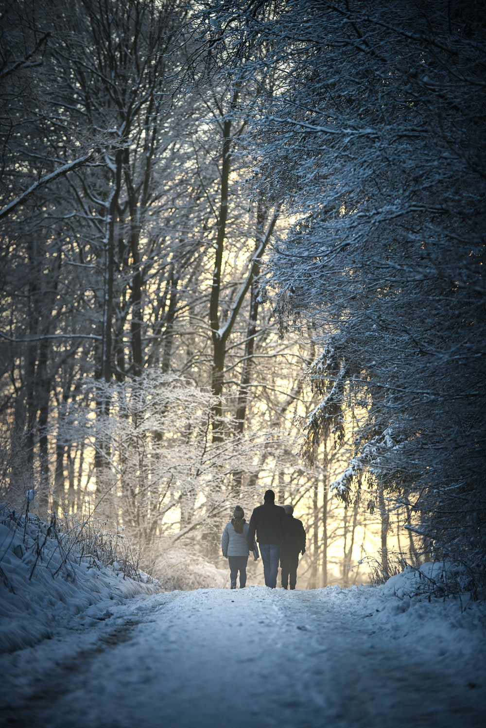 people walking on snow covered ground near trees during daytime